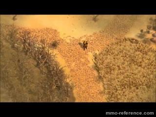 Vidéo The Exiled - Découvrte des bases du mmo en ligne