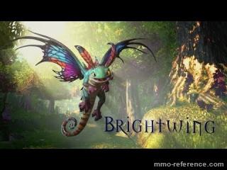 Vidéo Heroes of the Storm - Présentation du héros Brightwing